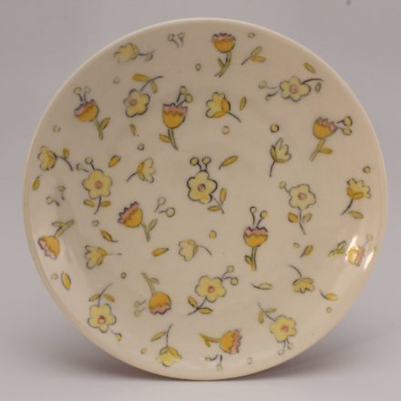 P452: Main image for Plate made by Molly Hatch