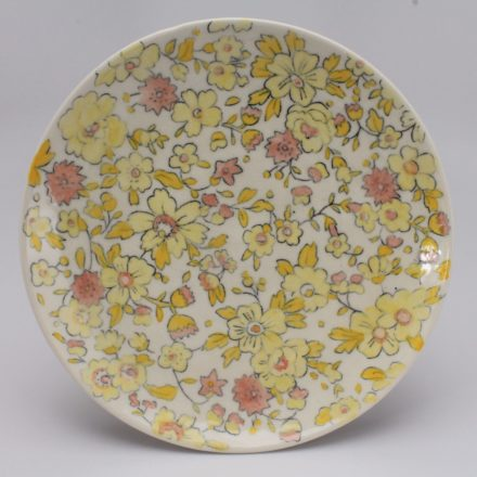 P481: Main image for Plate made by Molly Hatch