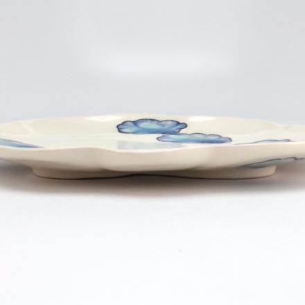 P516: Main image for Plate made by Julia Galloway