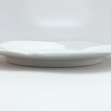 P520: Main image for Plate made by Sam Chung